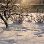 wintertime-058