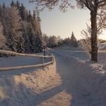 wintertime-059