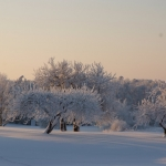 wintertime-061