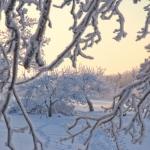 wintertime-064
