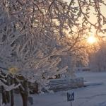 wintertime-065