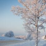 wintertime-066