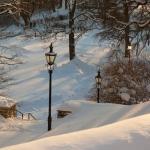 vesi-wintertime-100