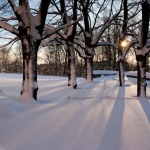 vesi-wintertime-105